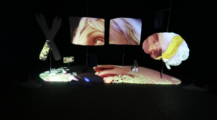 Hazel Brill installation // I MADE A SHOW FOR YOU (2017) // 13 minute video installation